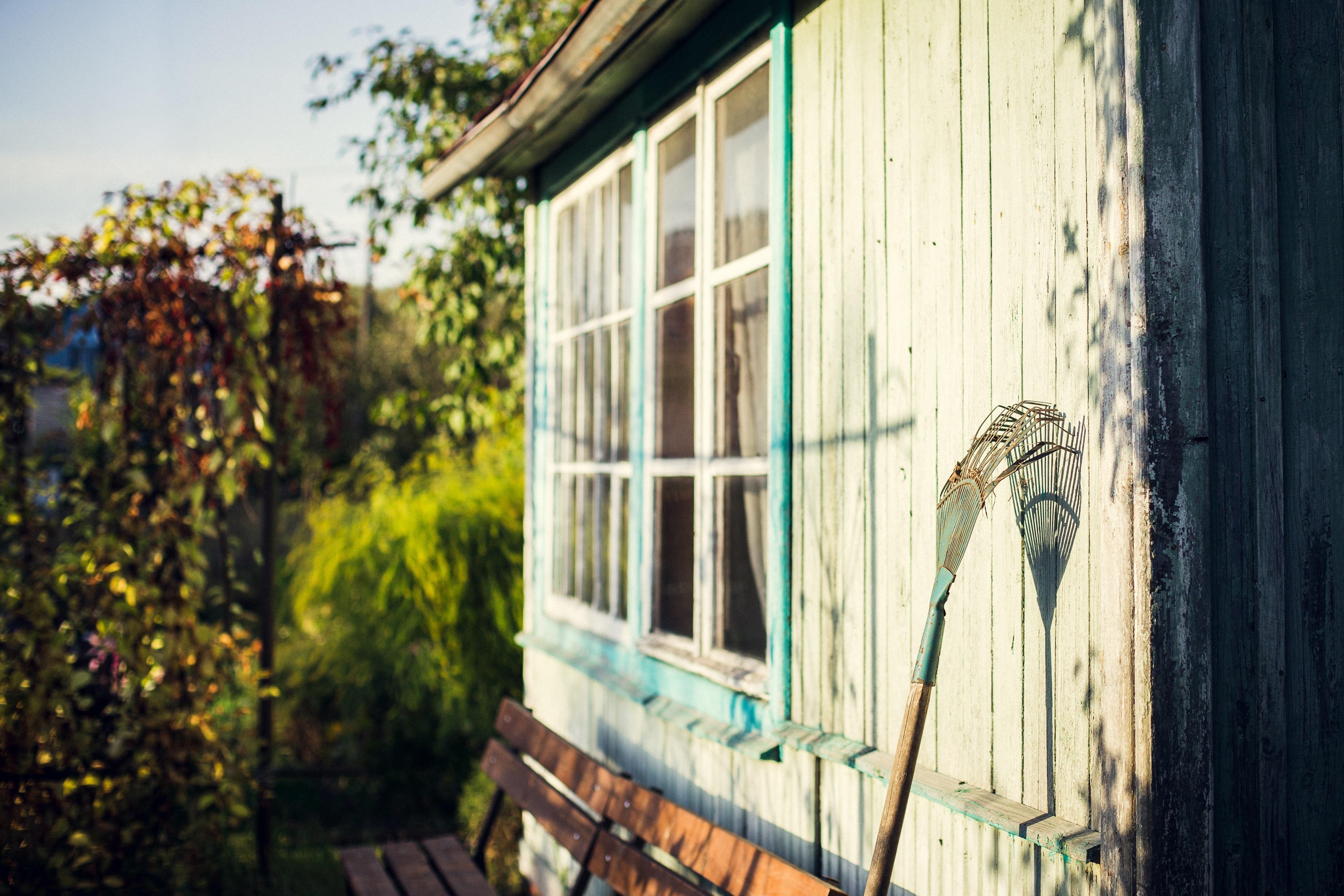 Abri de jardin en bois blanc